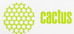 ремонт Cactus